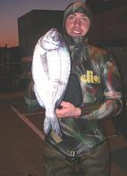 balck bream spearfishing